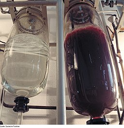 2 glass tanks hanging, one with clear liquid, one with dark red or purple liquid